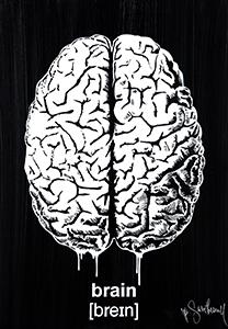 Mr Savethewall Oeuvre Brain Street Art